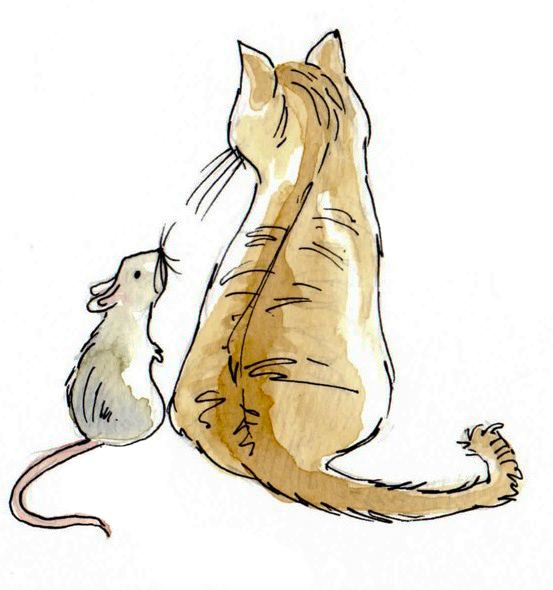 cat-and-mouse-2
