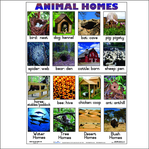 C60-E_Animal_homes_large
