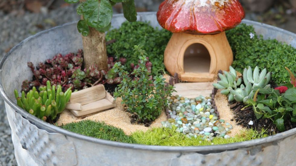 kids lets build a fairy garden tuesday july 18 at 3pm - How To Build A Fairy Garden